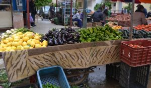 Daily vegetable souk (Charia Ouafa, Fes)