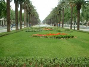 Avenue Hassan II (Fes)